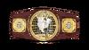 NXT North American Championship--ce0883c1531cfc9330a5a50c8e82b44d