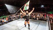 WWE WrestleMania Revenge Tour 2016 - Sheffield 5