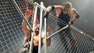 WrestleMania Revenge Tour 2014 - Newcastle.13
