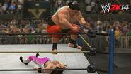 WWE 2K14 Screenshot.42