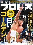 Weekly Pro Wrestling 2009