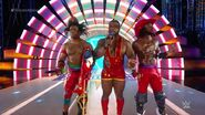 Best WrestleMania Ladder Matches.00041