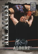 2002 WWF All Access (Fleer) Albert 8