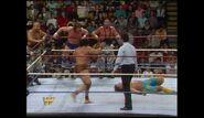 Survivor Series 1989.00025