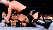 WrestleMania 17.28