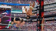 WrestleMania 35.5