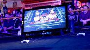 WrestleMania XXIX WWE '13 Challenge.1
