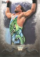2016 Topps WWE Undisputed Wrestling Cards Rob Van Dam 85