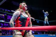 CMLL Martes Arena Mexico (February 25, 2020 10