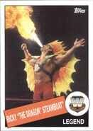 2015 WWE Heritage Wrestling Cards (Topps) Ricky Steamboat 38