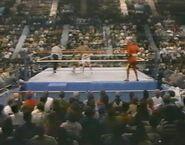February 13, 1988 WWF Superstars of Wrestling.00013