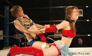 January 17, 2015 Ice Ribbon 2