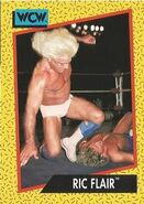 1991 WCW (Impel) Ric Flair 41