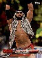 2018 WWE Wrestling Cards (Topps) Ariya Daivari 9