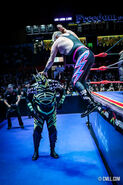 CMLL Martes Arena Mexico (February 25, 2020 16