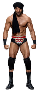 Jinder Mahal 2017 stat photo