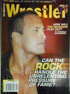 The Wrestler - January 2002