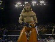 January 30, 1993 WWF Superstars of Wrestling.00013