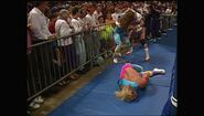 SummerSlam 1990.00001