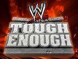 Casting Special (WWE Tough Enough 2)