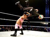 WWE World Tour 2013 - Minehead