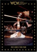 1991 WCW Collectible Trading Cards (Championship Marketing) Ric Goes Too Far 95