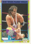 1995 WWF Wrestling Trading Cards (Merlin) Bob Holly 112
