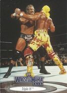 2003 WWE WrestleMania XIX (Fleer) Triple H 26