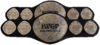 IWGP Junior Heavyweight Tag Team Championship Belt