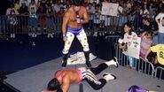 King of the Ring 1993.11