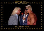 1991 WCW Collectible Trading Cards (Championship Marketing) Ric, Jim, and Sting 66