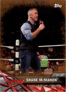 2017 WWE Road to WrestleMania Trading Cards (Topps) Shane McMahon 36