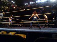 NXT House Show (Feb 20, 15') 3