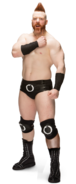 Sheamus Full-78