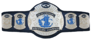 WCW World Heavywight 1991