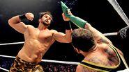 WWE WrestleMania Revenge Tour 2014 - Strasbourg.14