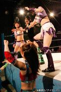 March 28, 2015 Ice Ribbon 6