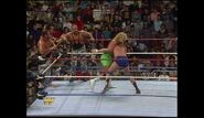 Survivor Series 1989.00027