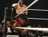 WrestleMania 23.43