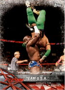 2017 WWE Road to WrestleMania Trading Cards (Topps) Team U.S.A. 95