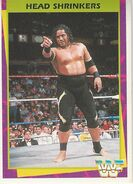1995 WWF Wrestling Trading Cards (Merlin) Head Shrinkers 82