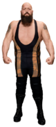 Big Show 2017 stat photo