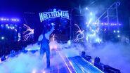 WrestleMania 33.148