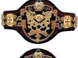 AJPW All Asia Tag Team Championship