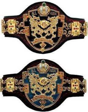 Image result for ajpw championship