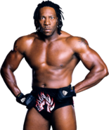 Bookert by cs 2
