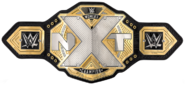 Nxt women s championship 2017 by nibble t-db4cvbk