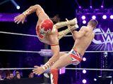 WWE Cruiserweight Classic 2016 (September 14, 2016)
