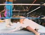 January 30, 1988 WWF Superstars of Wrestling.00004