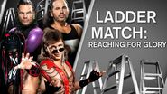 Ladder Match Reaching For Glory